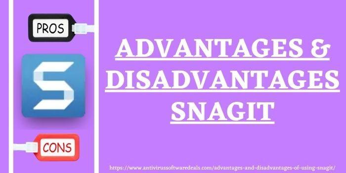 Advantages & Disadvantages Of Using Snagit